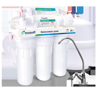Ecosoft System